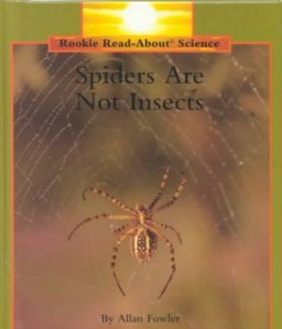 spiders are not